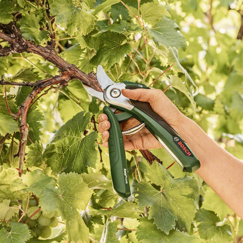 Bosch Sécateur de jardin sans fil EasyPrune (batterie 3,6 V, 450 coupes/charge de batterie, dans une boîte en carton)